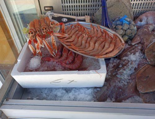El mejor marisco fresco en Torremolinos